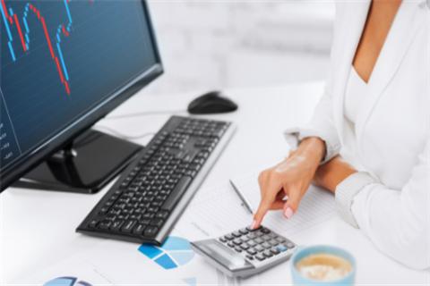 试述财务报表附注中重点项目的分析内容