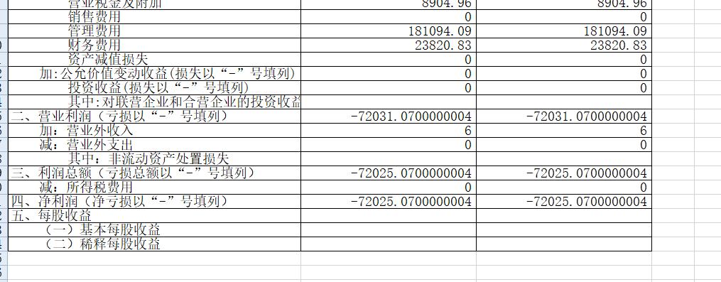 7.3.1150.7利润表位数很多