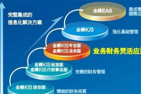金蝶EAS系统标准凭证导入需要什么数字格式